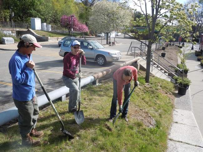 Roslindale Green & Clean spruces up neighborhood
