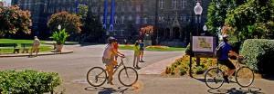Bikes and Healy 631 x 220