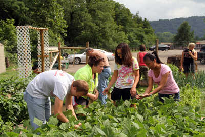 WJU Garden Is Providing Produce and Valuable Educational Experiences