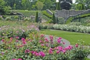 new-york-botanical-garden-new-york-city-ny374