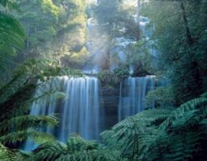 waterfall_web_environment
