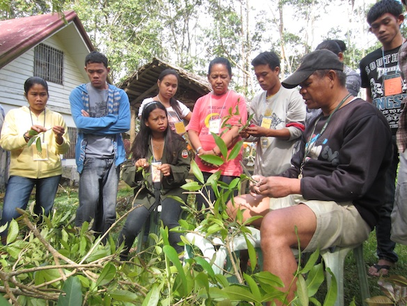 Teduray youth inspired by agroforestry farm in Bukidnon