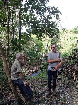 Bendum, an emerging center for ecology