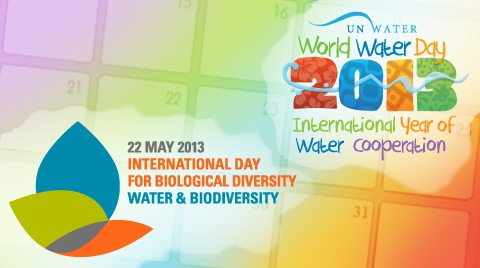UN marks International Day of Biological Diversity