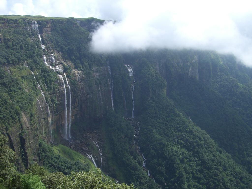 Sacred Grove in Meghalaya