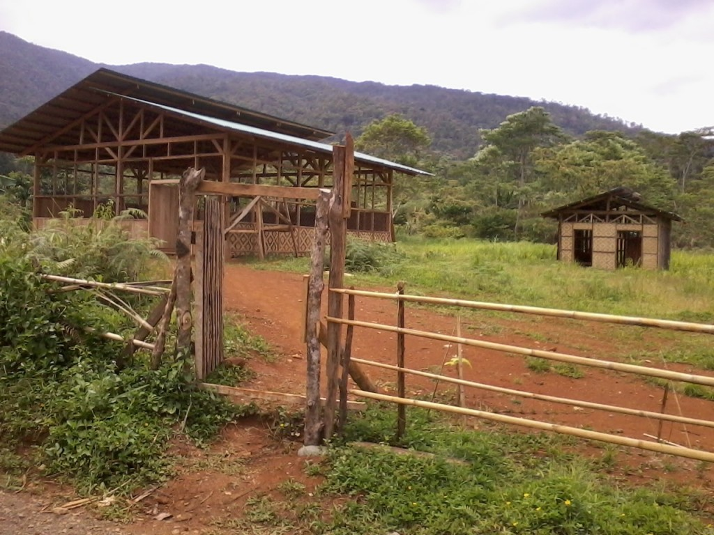 Improving training facilities for upland youth in Upper Pulangi, northern Mindanao