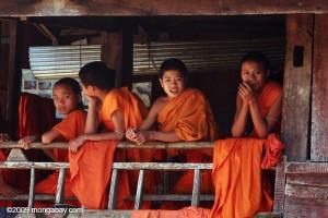 laos_0092_news.mongabay.com_