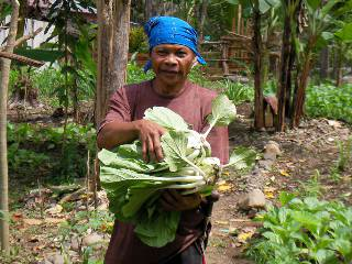 Sustainable Agriculture and Livelihood