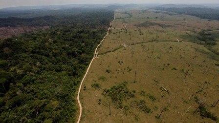 Jesuits' Amazon initiatives