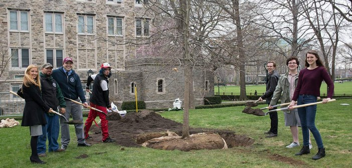 University Furthers Tree Conservation Efforts