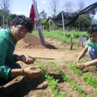 """Agricultural Technical School Kamba Rembe promotes """"Environment and Sustainable Development"""""""