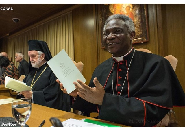 CIDSE open letter to the Pontifical Council for Justice and Peace