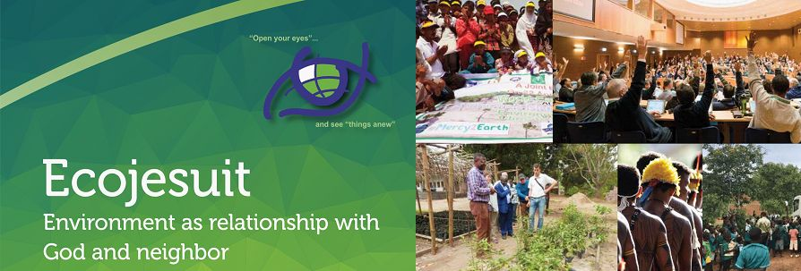Ecojesuit: Global Jesuit collaboration and action on environment as relationship