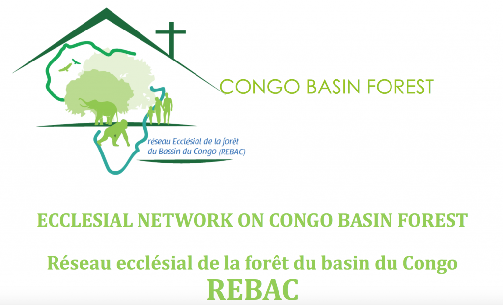 Collaborating for the Congo Basin and sharing Laudato Si' in COP23