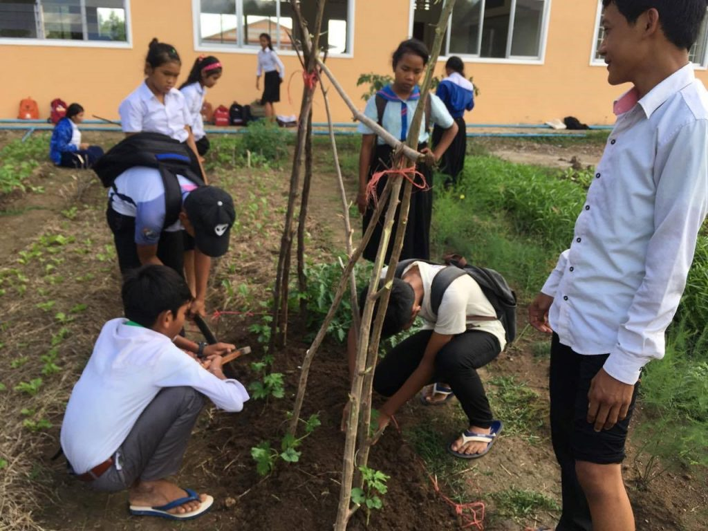 Xavier Jesuit School Vegetable Garden Thriving