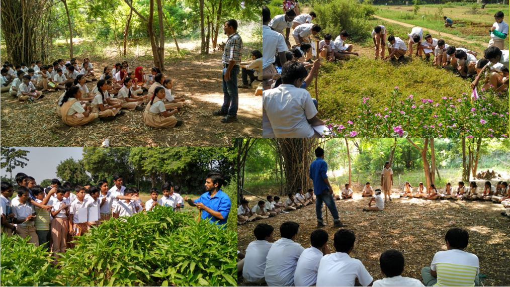 Environmental Education for Action