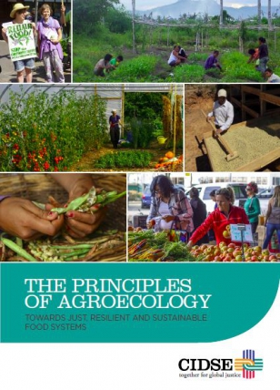 The Principles of Agroecology: Towards Just, Resilient and Sustainable Food Systems