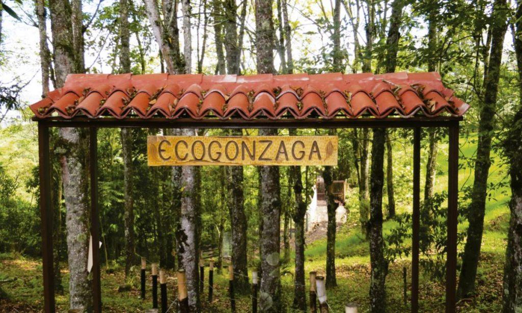 "Environmental Project Gonzaga ""PRAGO"""