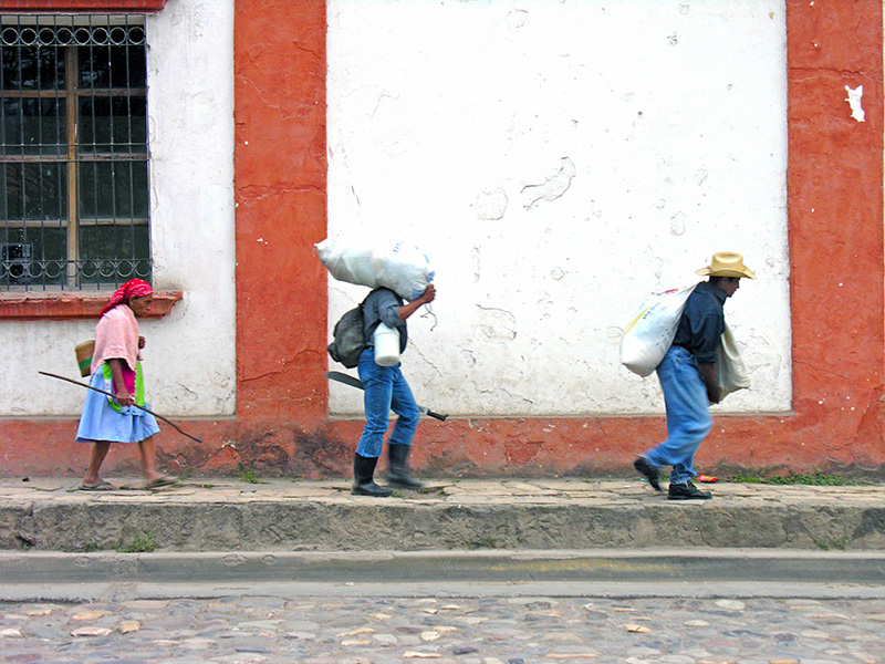 Mining and environmental justice: The struggle for water, health, and human security in Honduras
