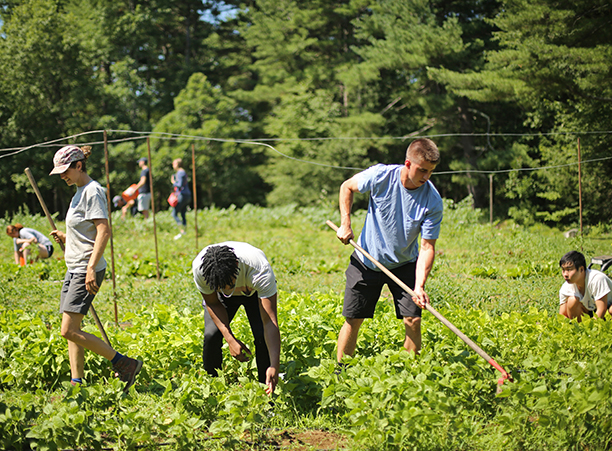 'Holy Cross Summer Course Explores Realities of Food Production'