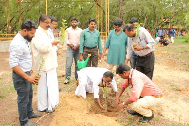 1001 saplings planted on environment day