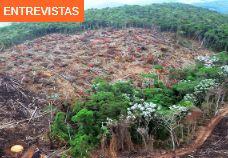 Pressão pró-desmatamento e barganhas políticas comprometem metas brasileiras de emissão de gás carbônico. Entrevista especial com Raoni Rajão