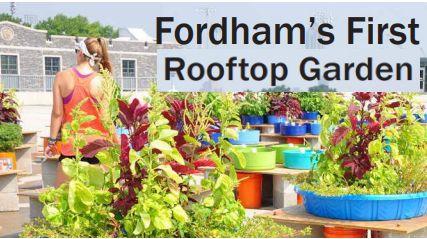 Fordham's First Rooftop Garden