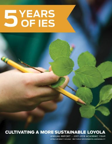 5 years of IES