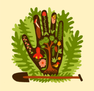 Have a hand in planting Seattle's future forest!