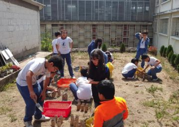 Colegios jesuitas innovadores en América Latina