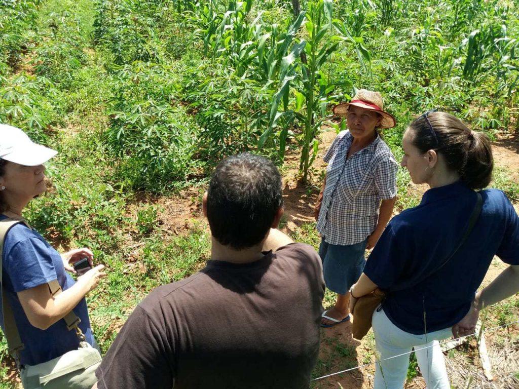 La Regional de Canindeyú recibe la visita de representantes de Entreculturas y AECID. – Centro de Estudios Paraguayos Antonio Guasch (CEPAG)