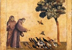La conversion écologique – Jesuites: Europe Occidentale Francophone