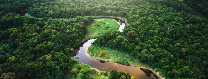 Sínodo sobre Amazonía: 'Buscar caminos realmente nuevos' – Red Eclesial Panamazónica (Repam)