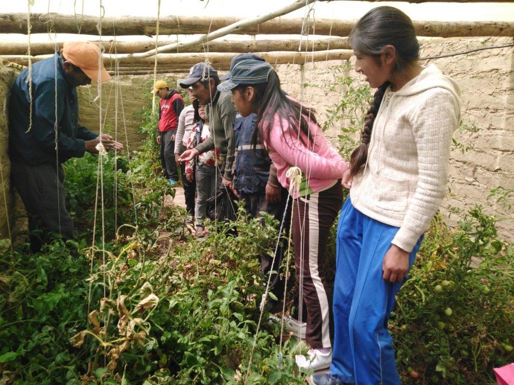 CISEP realiza intercambio de experiencias en agricultura urbana periurbana  – Jesuitas Bolivia