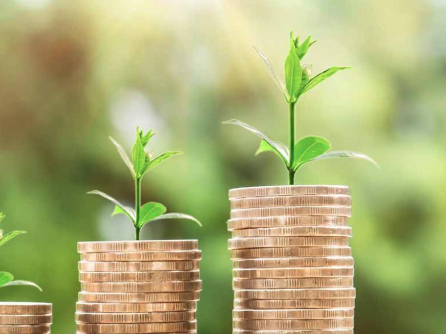 Impuestos verdes: Desafíos para el futuro – Universidad Alberto Hurtado