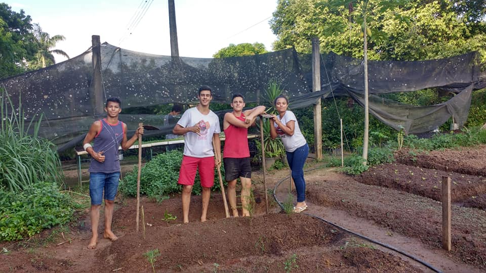Production of Seedlings and Medicinal Vegetable Garden in EFA de Castelo – MEPES