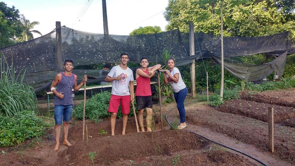 Produção de Mudas e Horta Medicinal na EFA de Castelo – Movimento de Educação Promocional do Espírito Santo (MEPES)