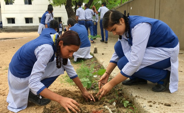 Monsoon Tree Plantation at Amar Jyoti School, Bodhgaya – Tarumitra
