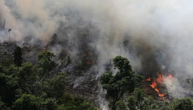 El CELAM levanta la voz por la Amazonía – CPAL