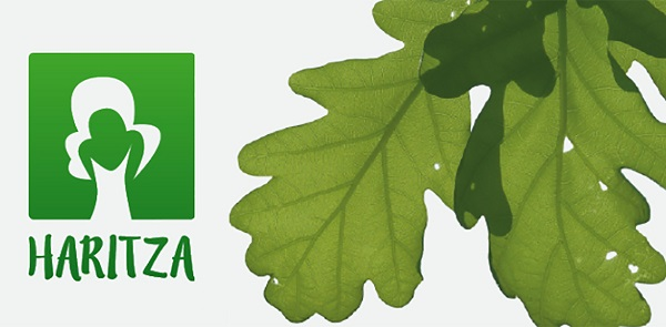 Good environmental practices in Deusto university – Jesuitas España