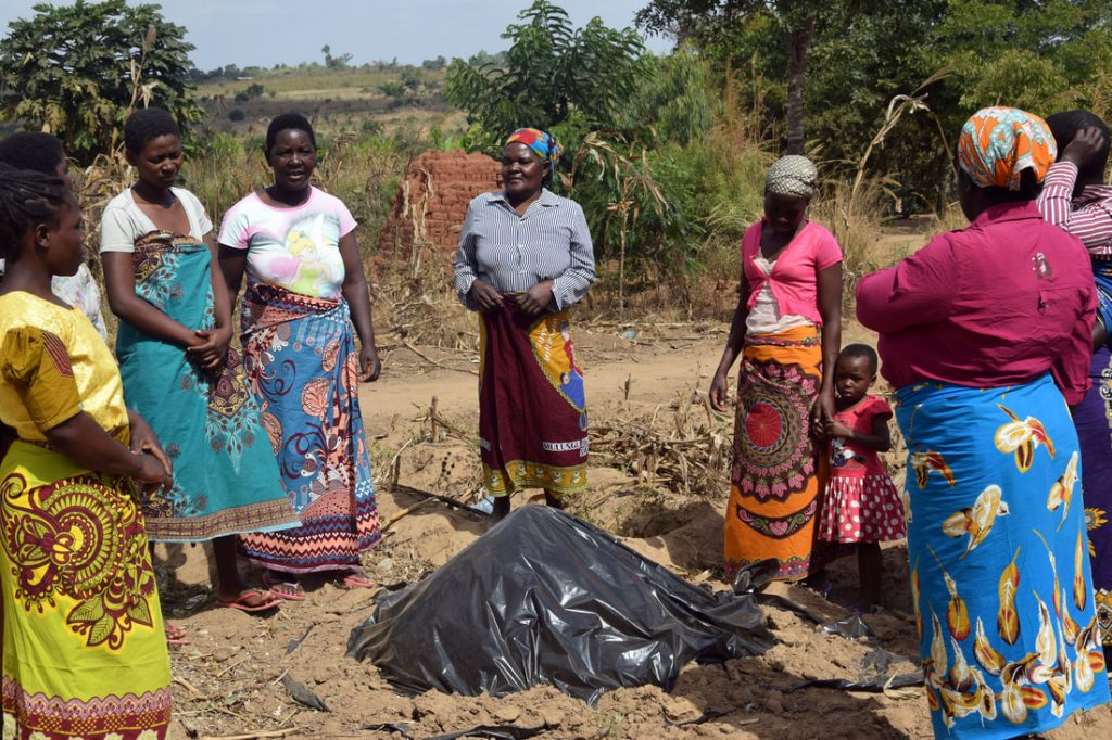 Building resilience of farming communities in Kasungu, Malawi, to the impacts of climate change (Tasintha) – JESUIT CENTRE FOR ECOLOGY AND DEVELOPMENT (JCED)