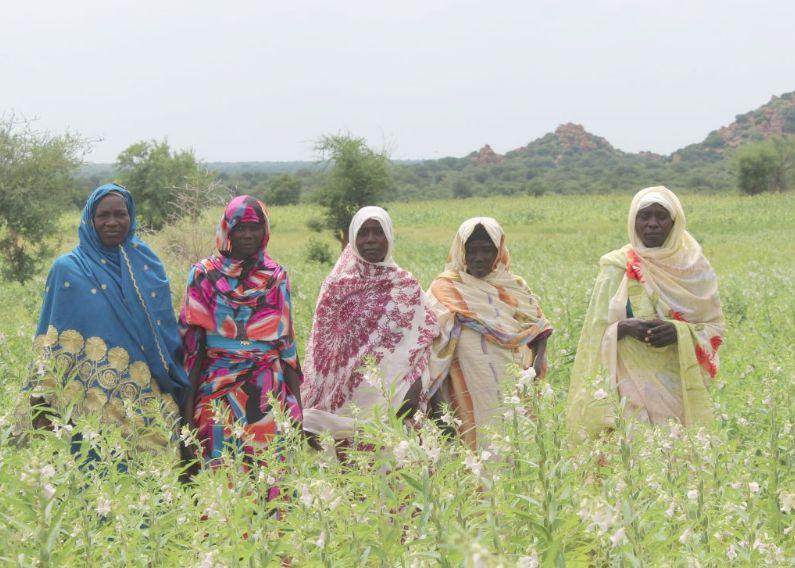 Tchélati: mujeres chadianas que son motor de cambio – entreculturas
