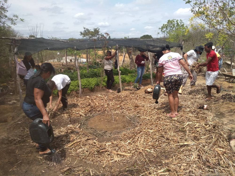 Quilombo Melquíades and Amâncio Lagoon receives Southwest Bahia Agroecology Preliminary – CEAS – CENTER FOR STUDIES AND SOCIAL ACTION