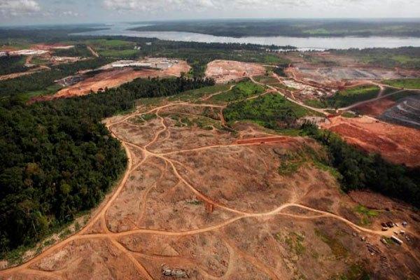 La deforestacion en la Amazonia se dispara y aumenta presion sobre Bolsonaro – Fundación Acción Cultural Loyola