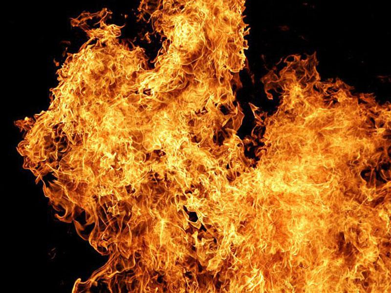 Ardió el Amazonas en Brasil, arde Australia ahora. ¿Qué responsabilidad tienen sus gobernantes? – CPAL